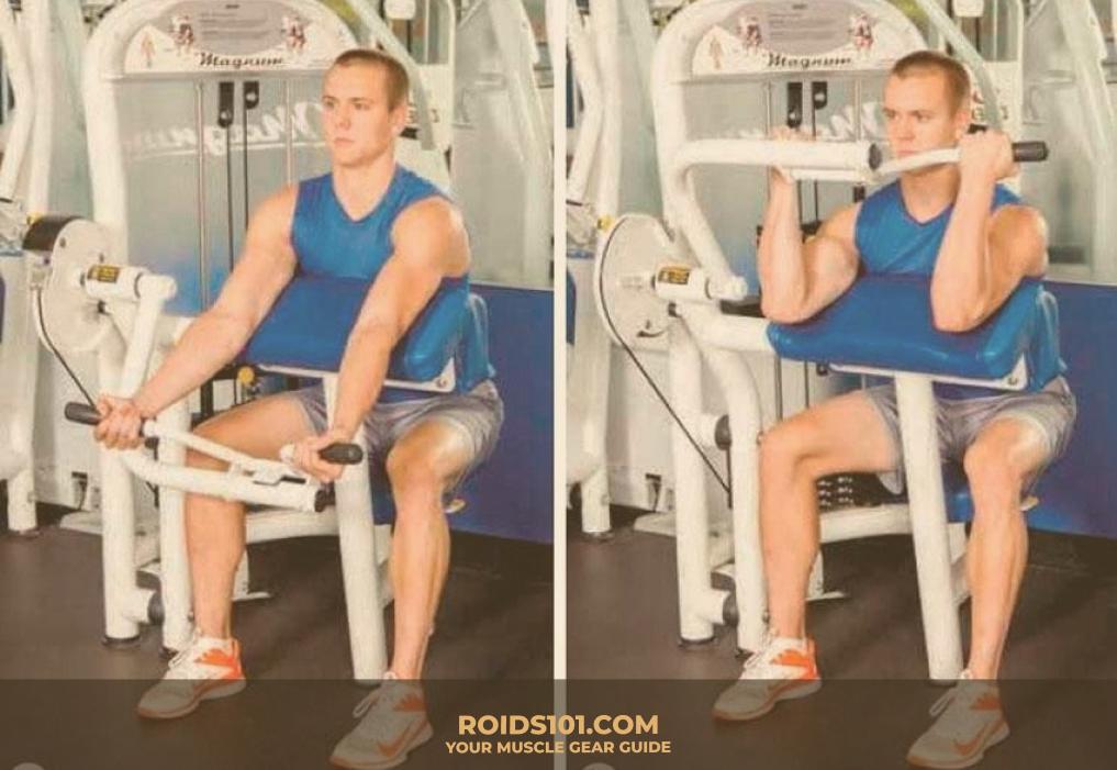 Curl-Machine-Exercise-Roids101-3