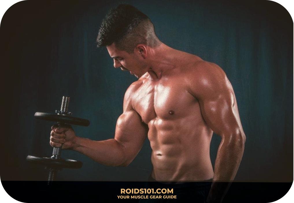 Dumbbell-Hammer-Curl-Exercise-Roids101-10