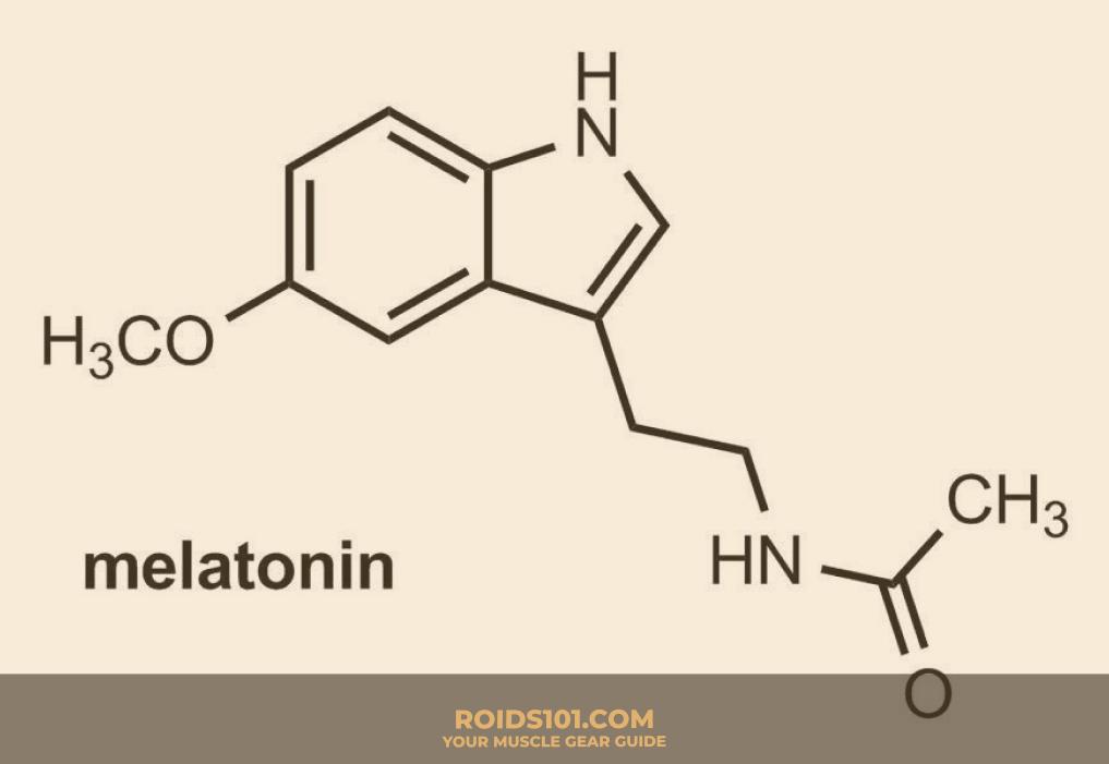 Melatonin-Roids101-2